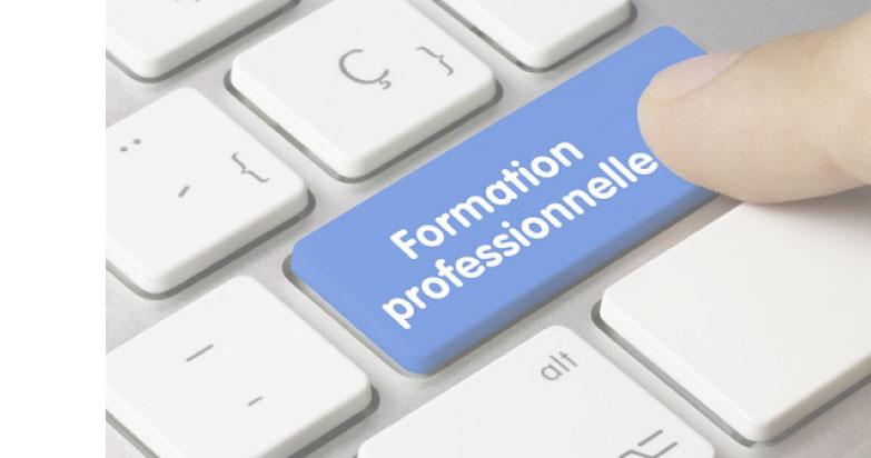 Formation-Pro-Reforme.jpg
