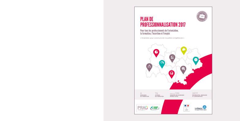 Plan de professionnalisation 2017
